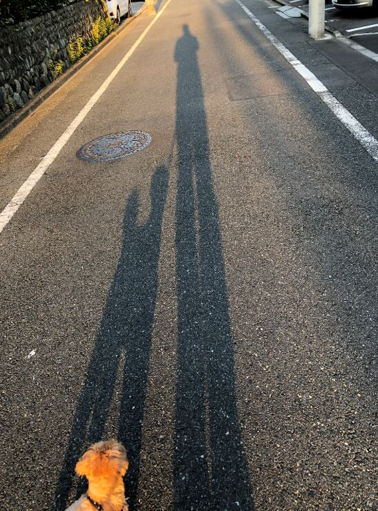 f:id:Ikegamiblog_tokyo:20191101191755j:plain