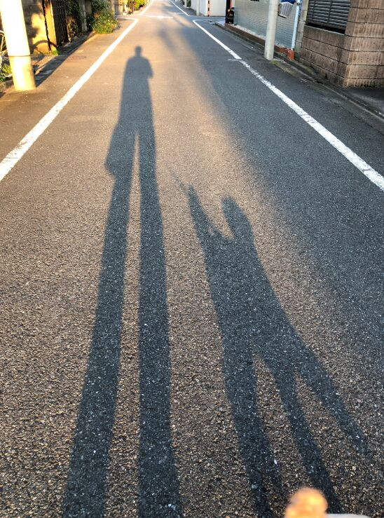 f:id:Ikegamiblog_tokyo:20191101191818j:plain