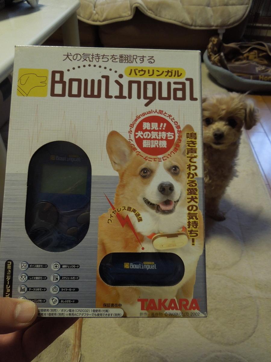 f:id:Ikegamiblog_tokyo:20191125161501j:plain