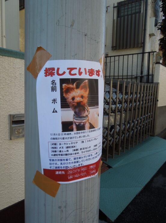 f:id:Ikegamiblog_tokyo:20191208132748j:plain