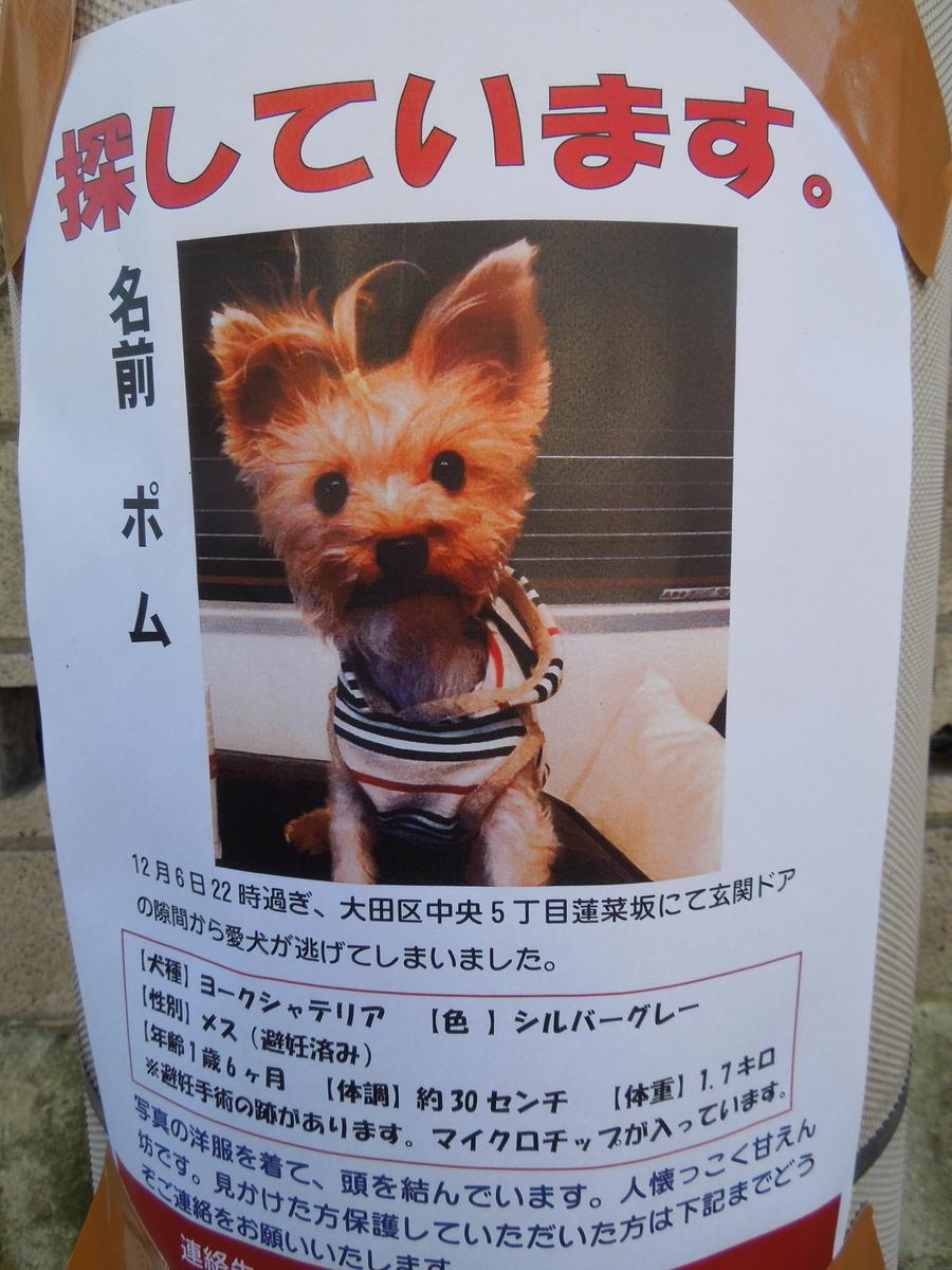 f:id:Ikegamiblog_tokyo:20191208132958j:plain