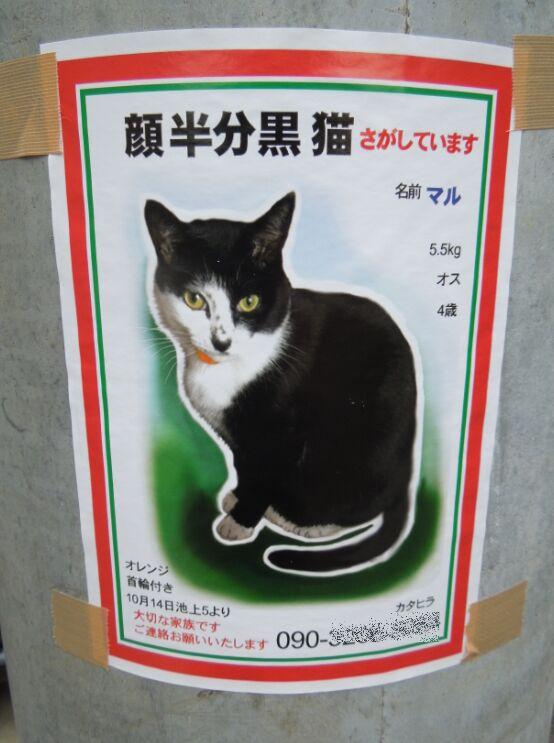 f:id:Ikegamiblog_tokyo:20191208133044j:plain
