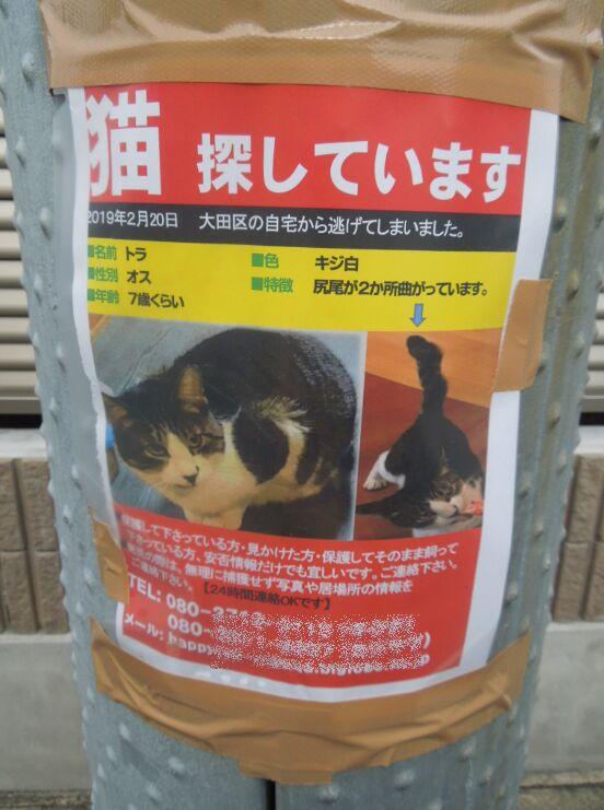 f:id:Ikegamiblog_tokyo:20191208133058j:plain