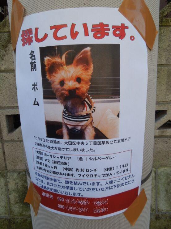 f:id:Ikegamiblog_tokyo:20191208133513j:plain