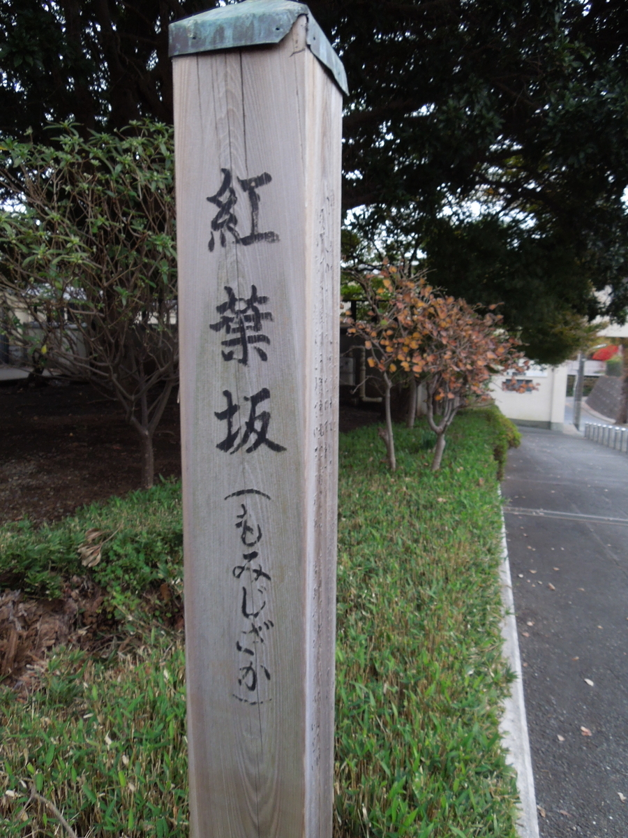 f:id:Ikegamiblog_tokyo:20191209171406j:plain