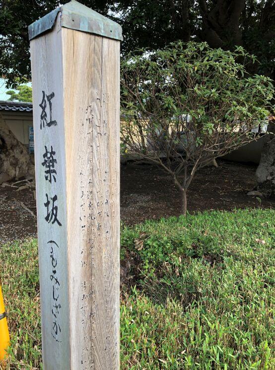 f:id:Ikegamiblog_tokyo:20191211120853j:plain