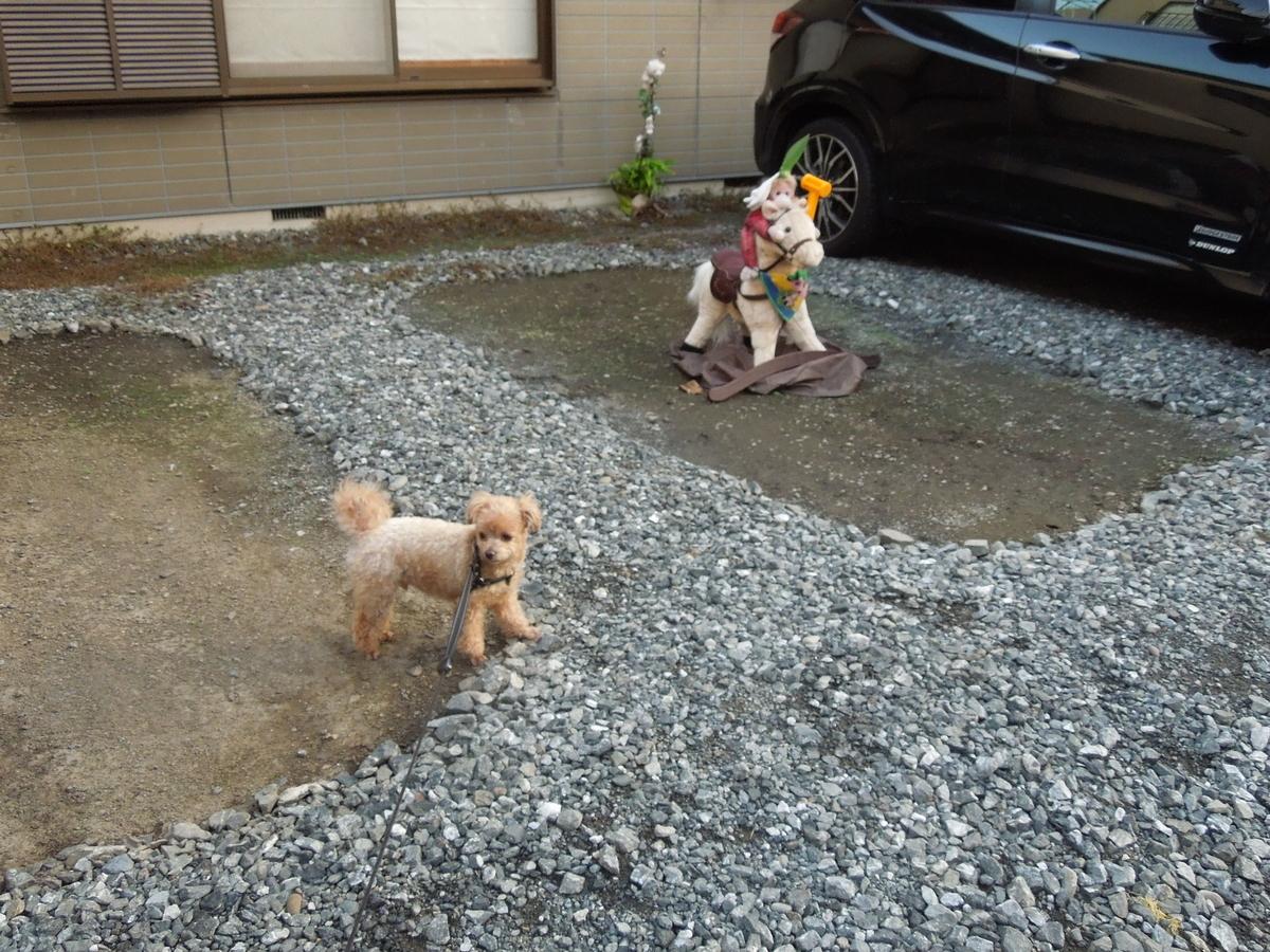 f:id:Ikegamiblog_tokyo:20191224090435j:plain