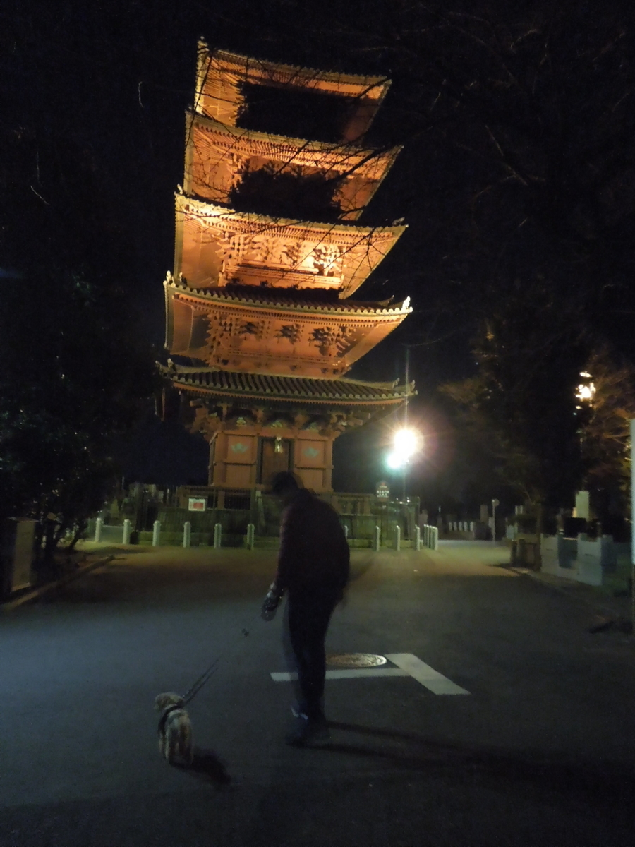 f:id:Ikegamiblog_tokyo:20200102114220j:plain