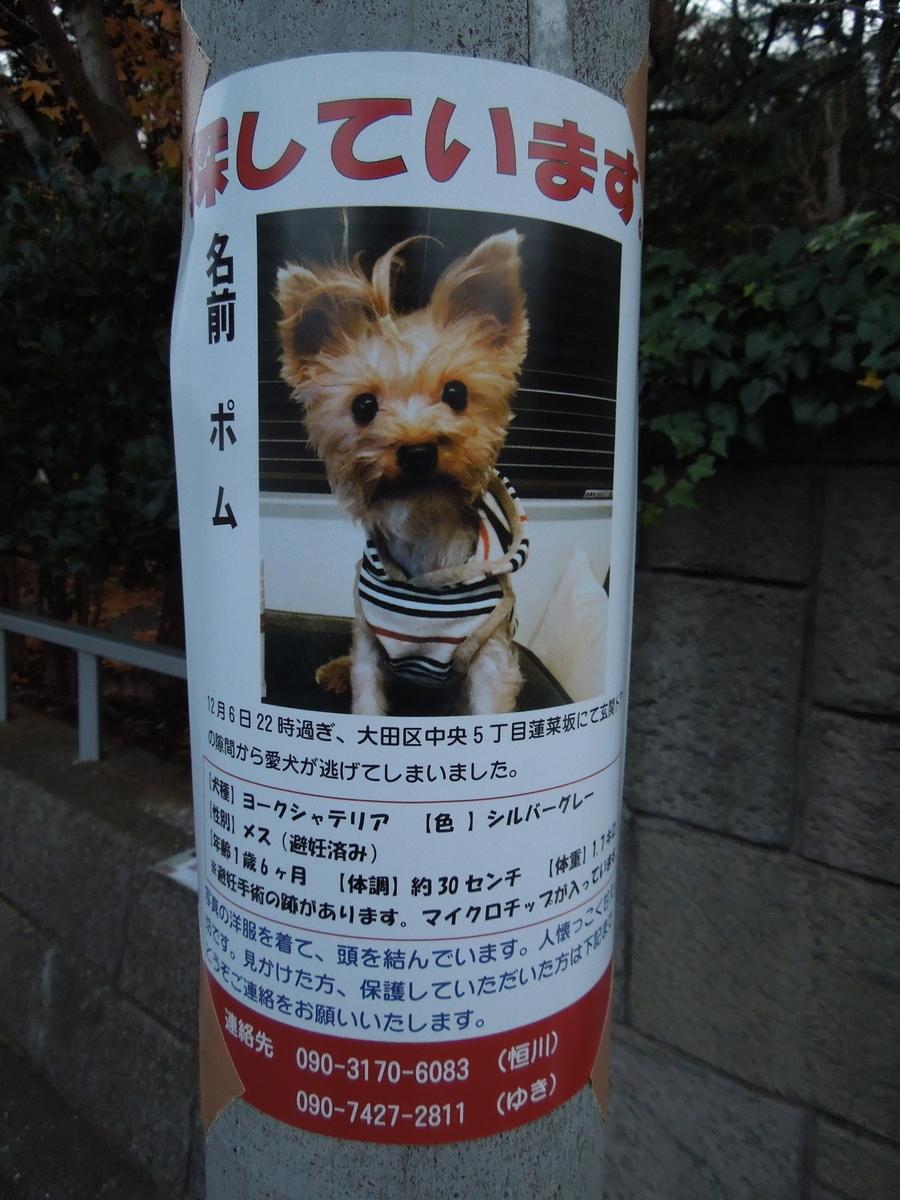 f:id:Ikegamiblog_tokyo:20200104154138j:plain