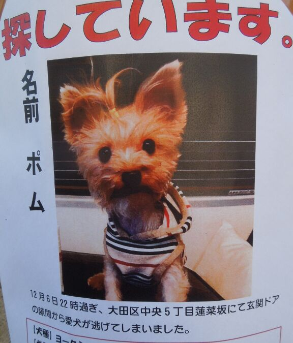 f:id:Ikegamiblog_tokyo:20200114180452j:plain