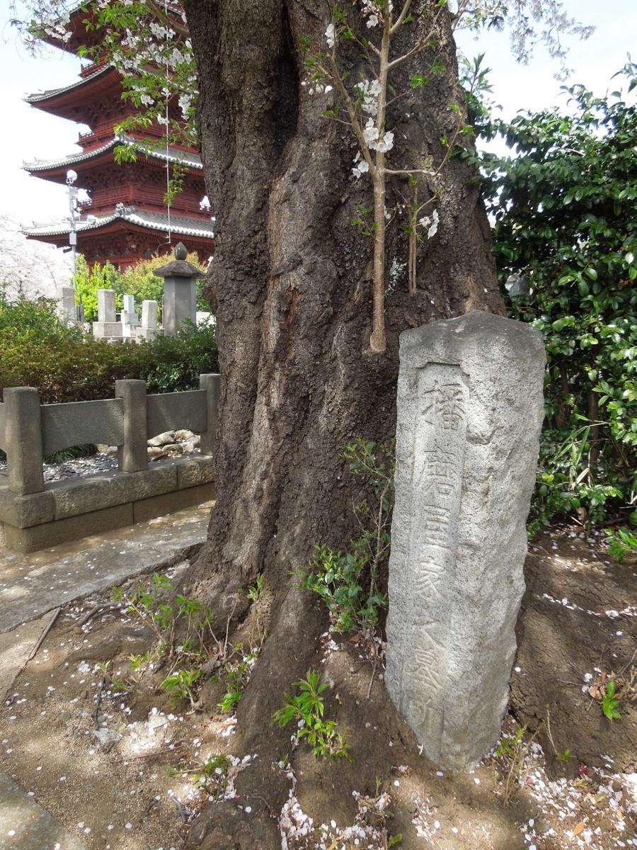 f:id:Ikegamiblog_tokyo:20200120155454j:plain