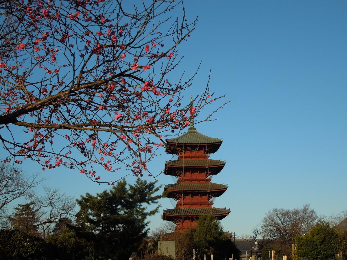 f:id:Ikegamiblog_tokyo:20200122194026j:plain