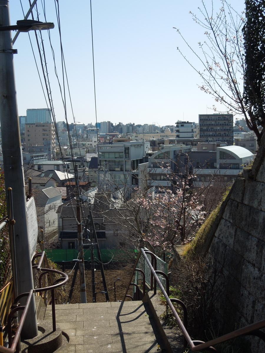 f:id:Ikegamiblog_tokyo:20200211211300j:plain