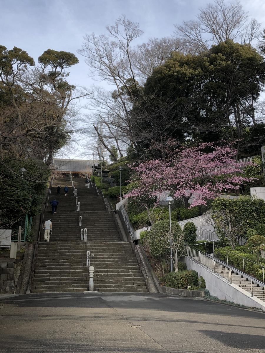 f:id:Ikegamiblog_tokyo:20200215221131j:plain