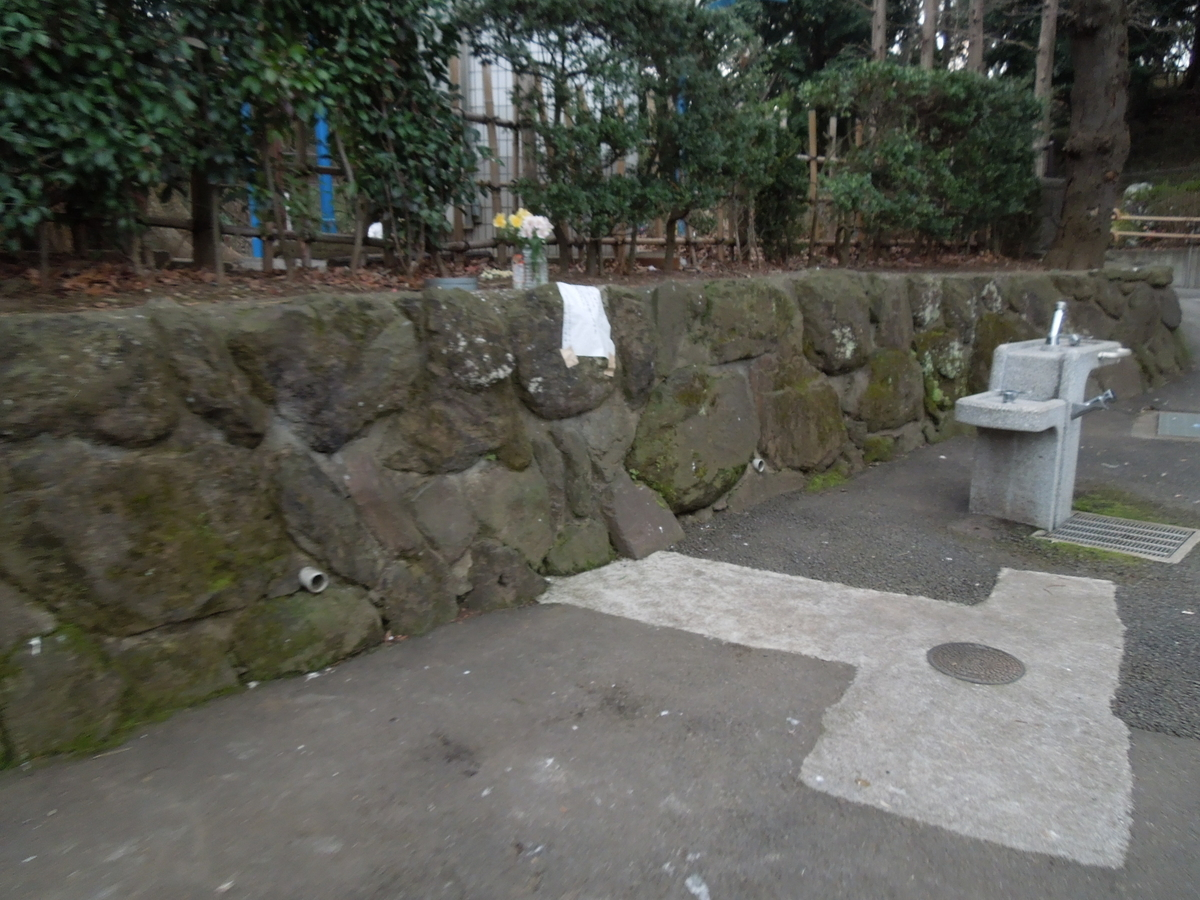 f:id:Ikegamiblog_tokyo:20200216203408j:plain