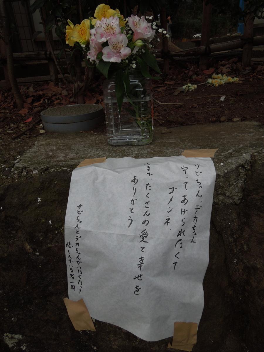 f:id:Ikegamiblog_tokyo:20200216203510j:plain