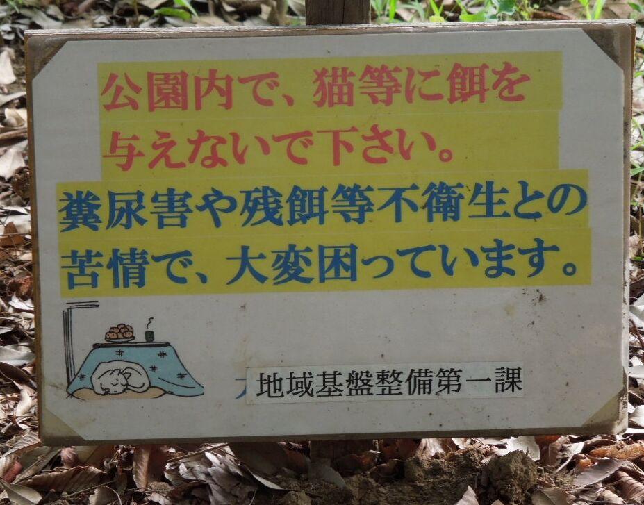 f:id:Ikegamiblog_tokyo:20200217185616j:plain