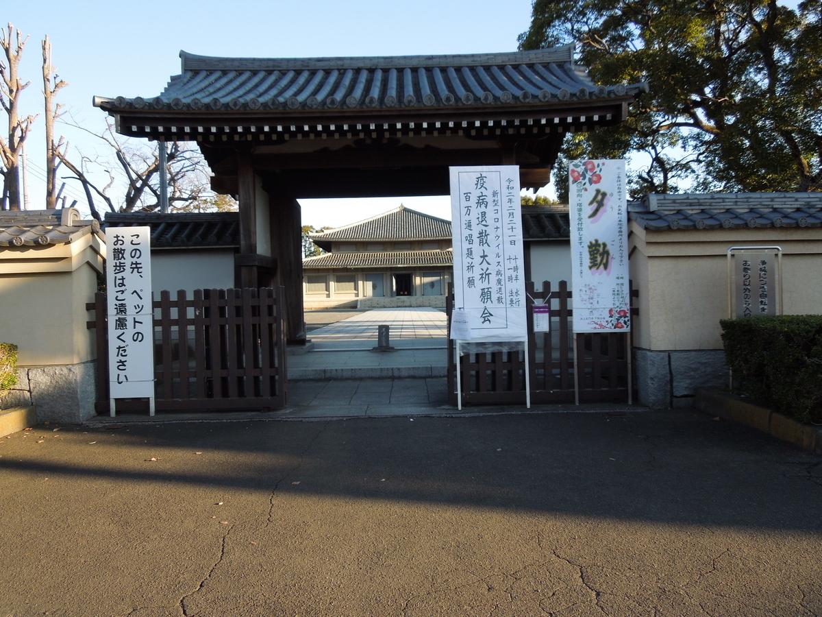 f:id:Ikegamiblog_tokyo:20200219123728j:plain