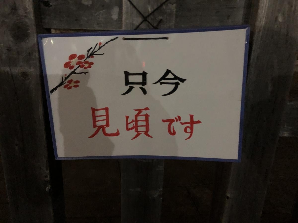 f:id:Ikegamiblog_tokyo:20200224210159j:plain