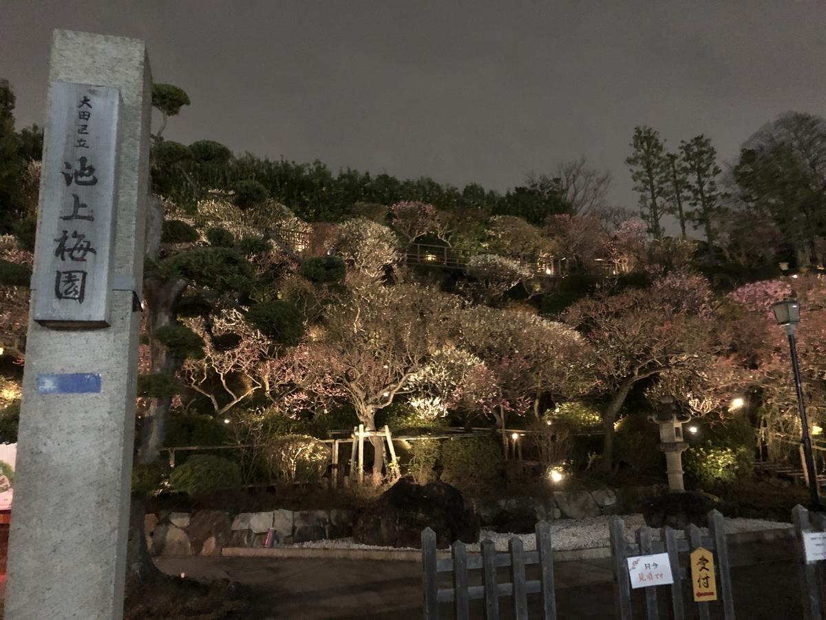 f:id:Ikegamiblog_tokyo:20200224210305j:plain