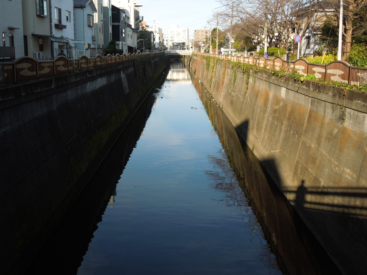 f:id:Ikegamiblog_tokyo:20200303074631j:plain