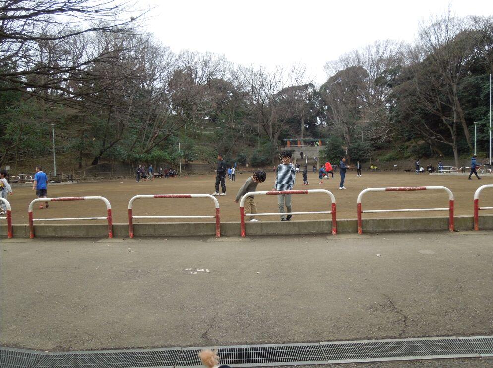 f:id:Ikegamiblog_tokyo:20200309212736j:plain