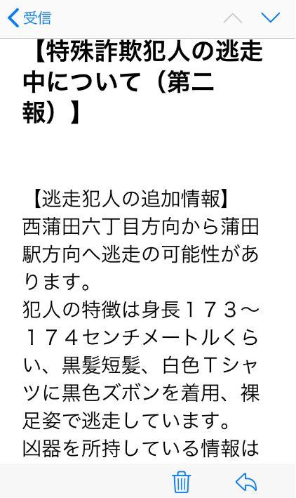 f:id:Ikegamiblog_tokyo:20200318184411j:plain