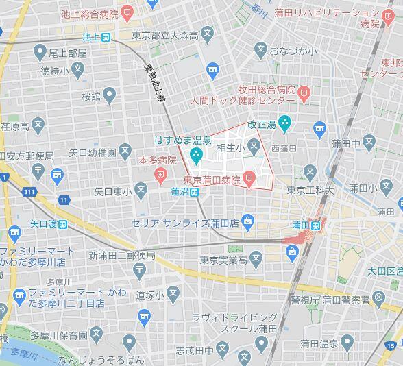 f:id:Ikegamiblog_tokyo:20200318184828j:plain