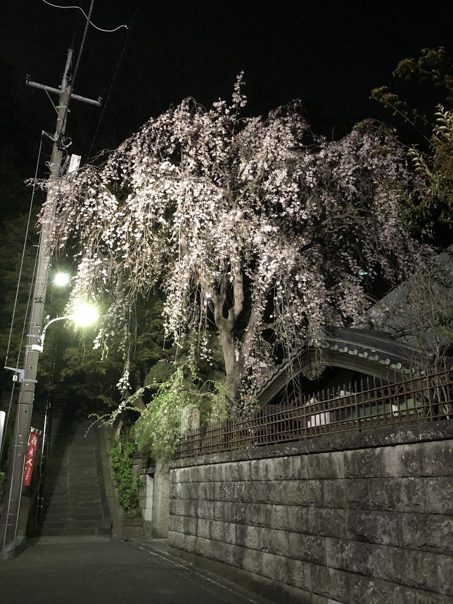 f:id:Ikegamiblog_tokyo:20200324141028j:plain