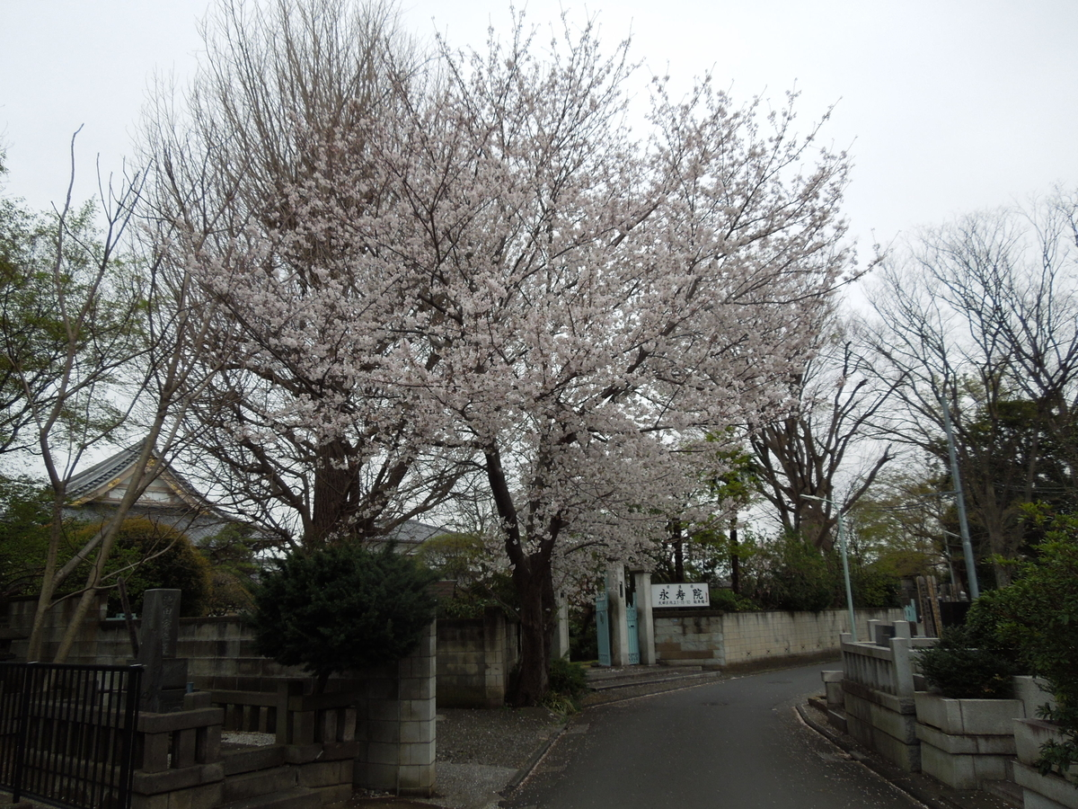f:id:Ikegamiblog_tokyo:20200330210852j:plain