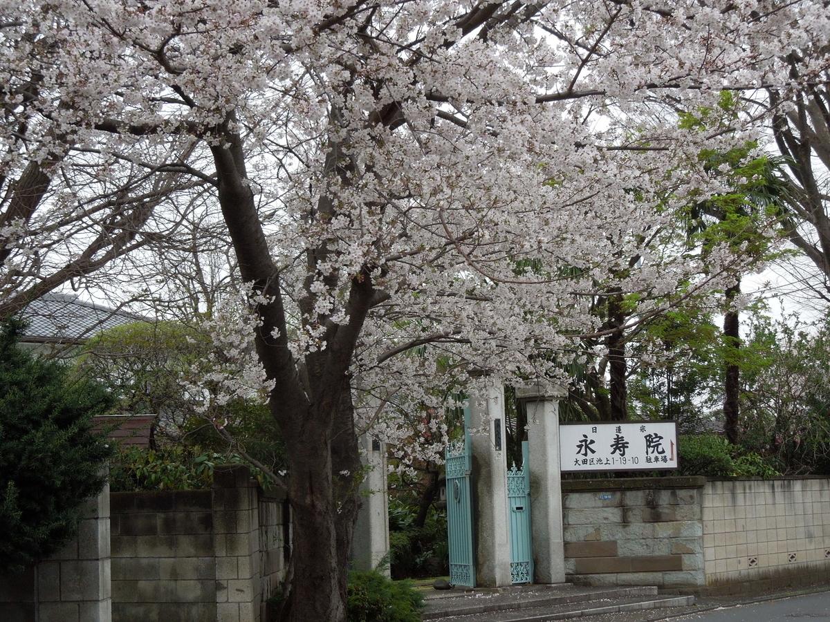 f:id:Ikegamiblog_tokyo:20200330210924j:plain
