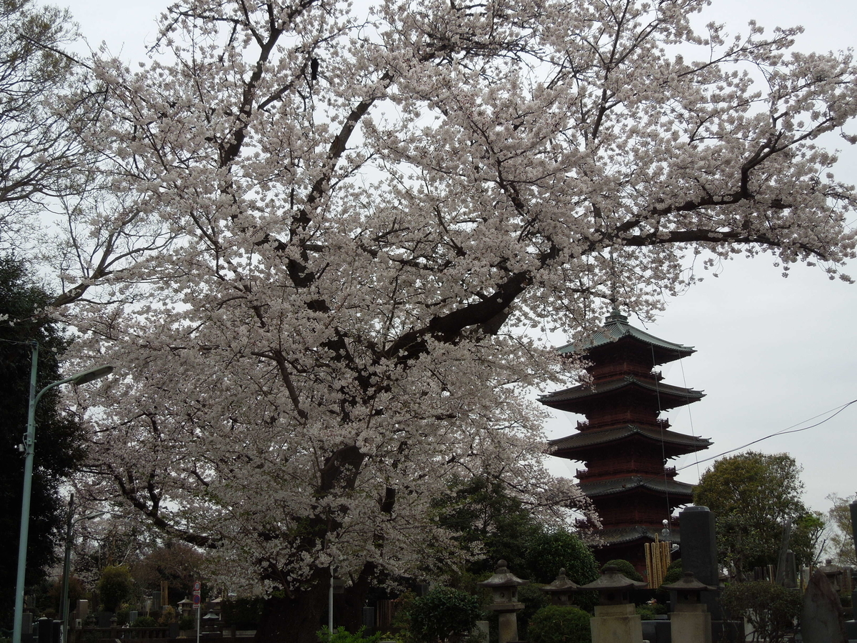 f:id:Ikegamiblog_tokyo:20200330210954j:plain