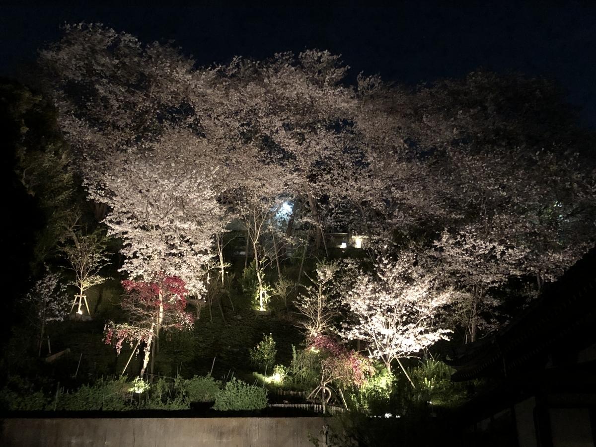 f:id:Ikegamiblog_tokyo:20200402202414j:plain