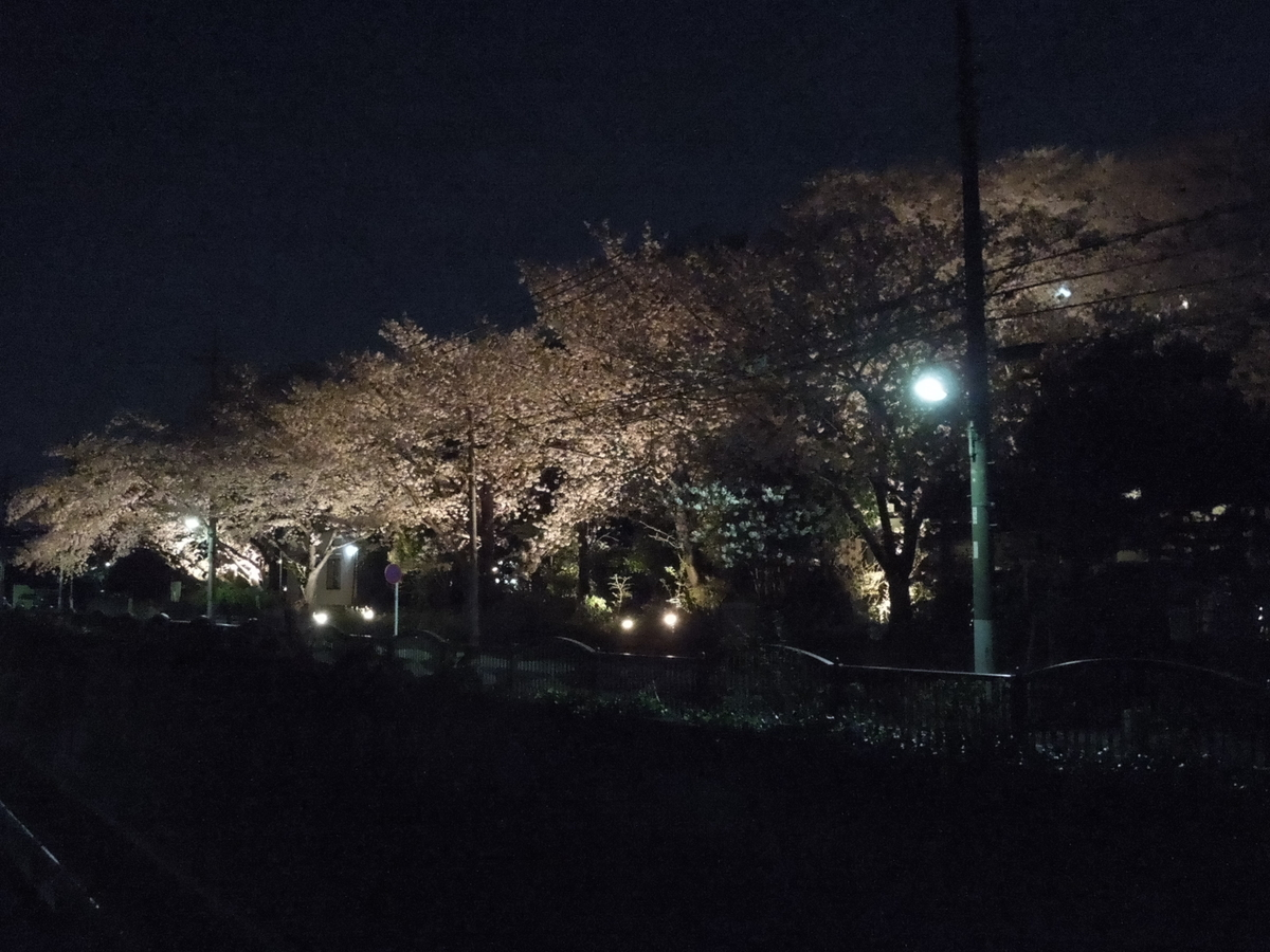 f:id:Ikegamiblog_tokyo:20200402202622j:plain