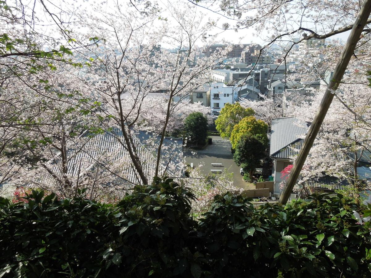 f:id:Ikegamiblog_tokyo:20200404133953j:plain