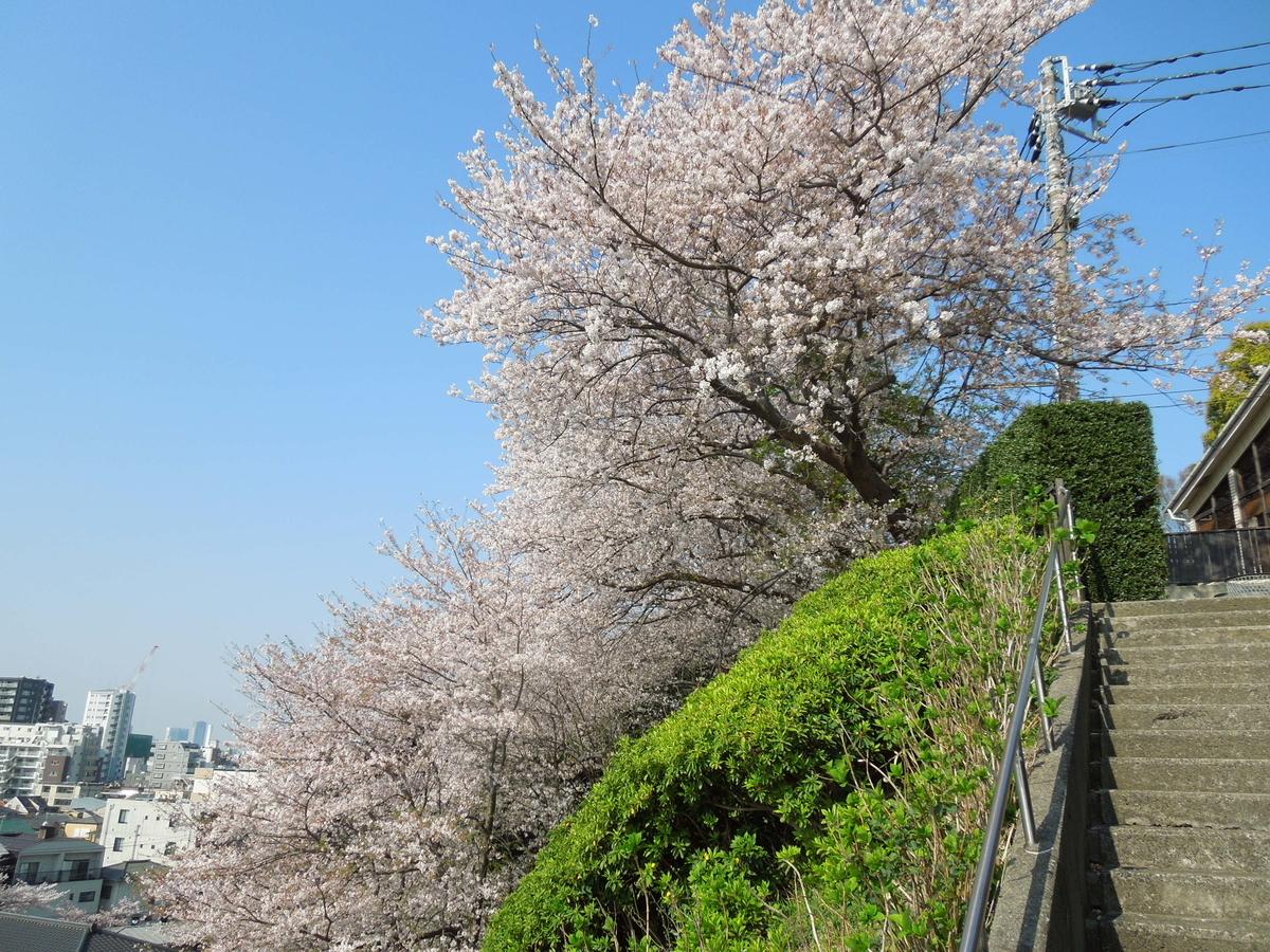 f:id:Ikegamiblog_tokyo:20200404134229j:plain