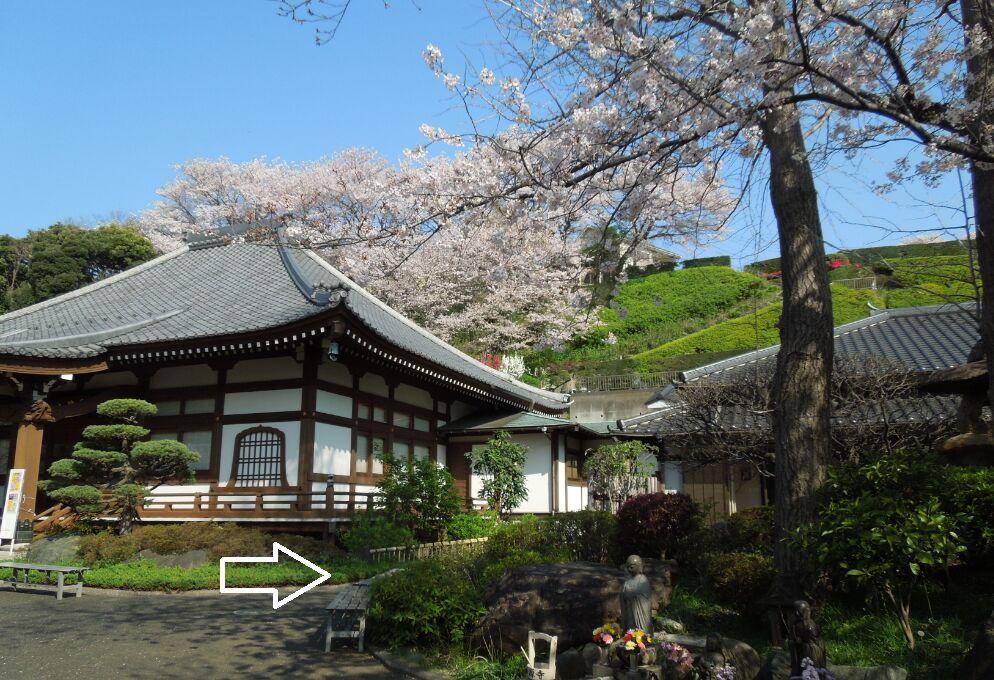 f:id:Ikegamiblog_tokyo:20200404142023j:plain