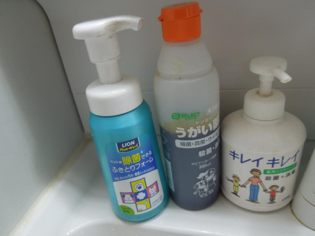 f:id:Ikegamiblog_tokyo:20200416102316j:plain