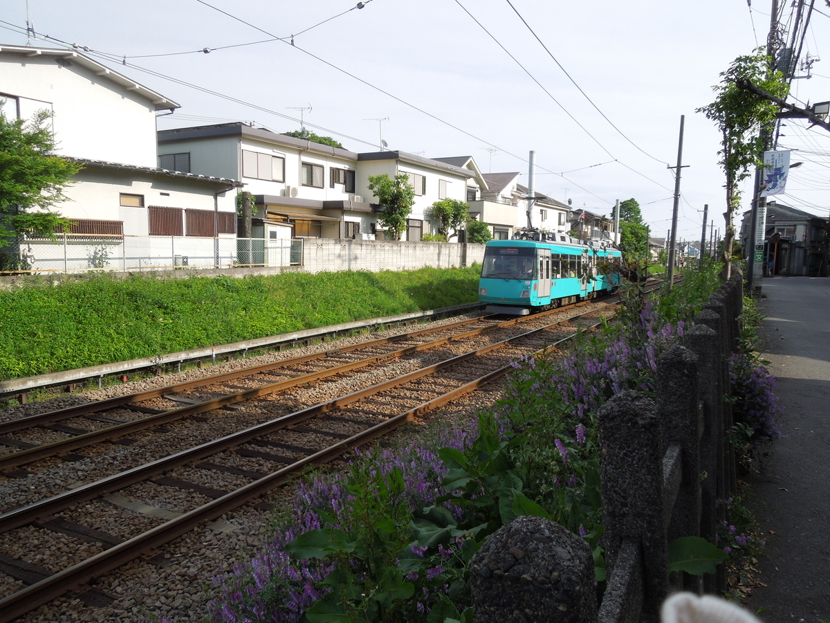 f:id:Ikegamiblog_tokyo:20200514212125j:plain