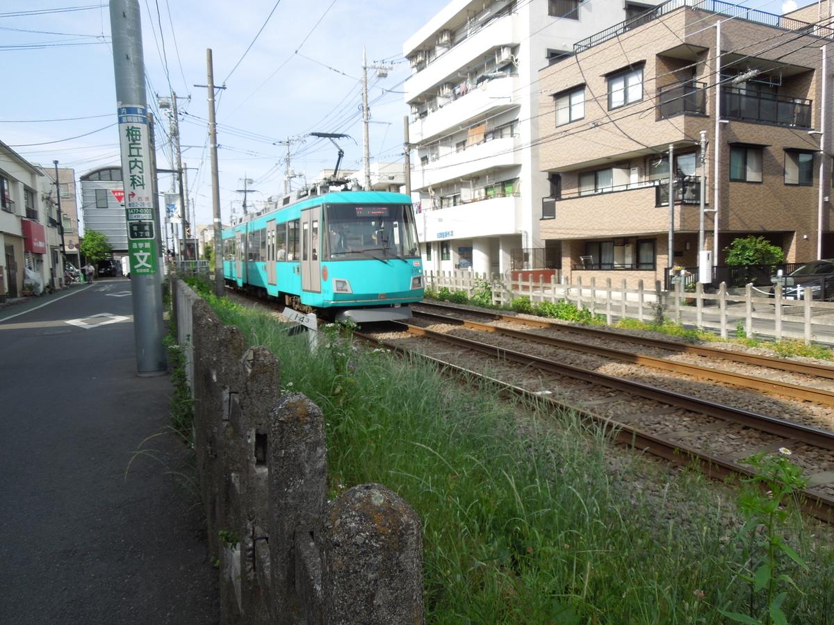 f:id:Ikegamiblog_tokyo:20200517205827j:plain