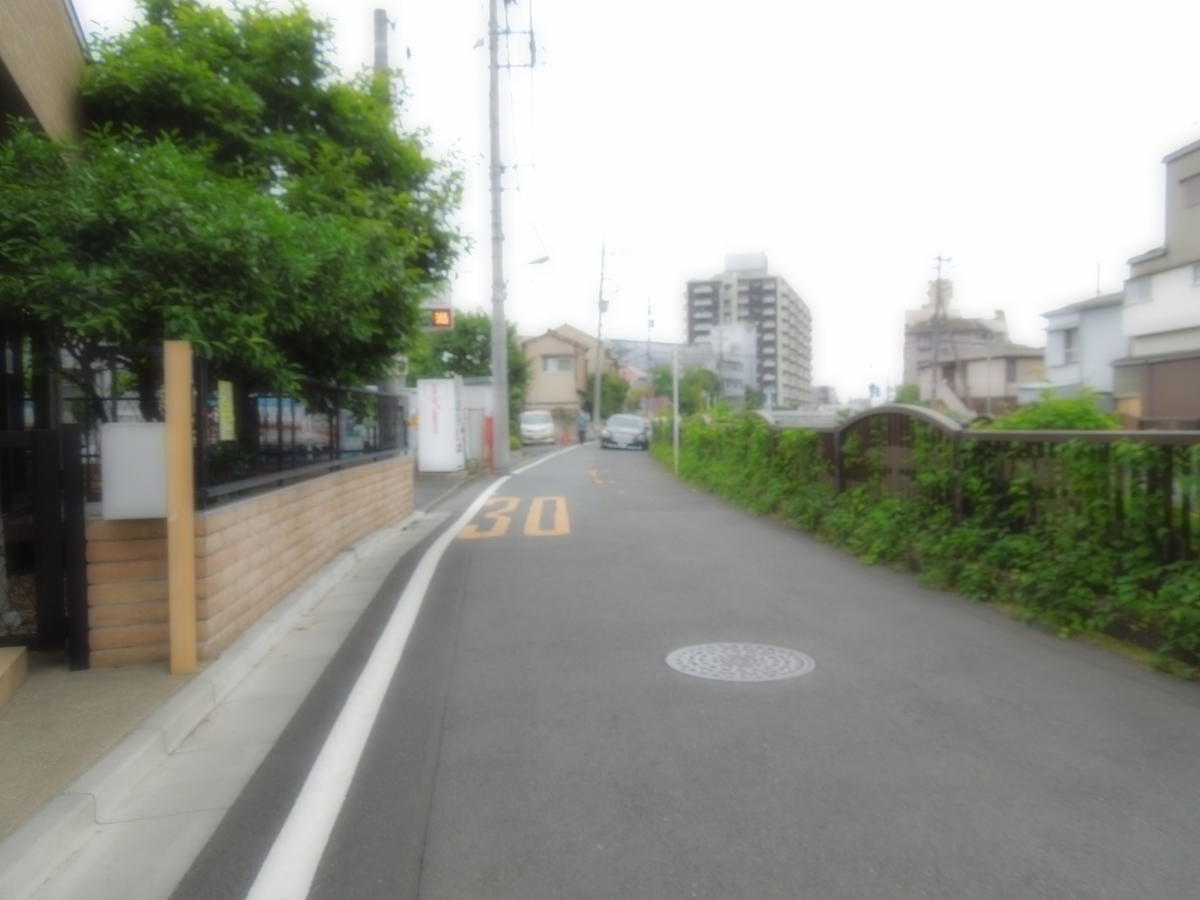 f:id:Ikegamiblog_tokyo:20200518100110j:plain