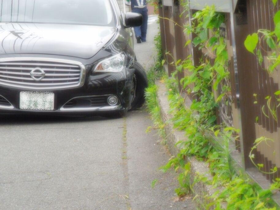 f:id:Ikegamiblog_tokyo:20200518100307j:plain