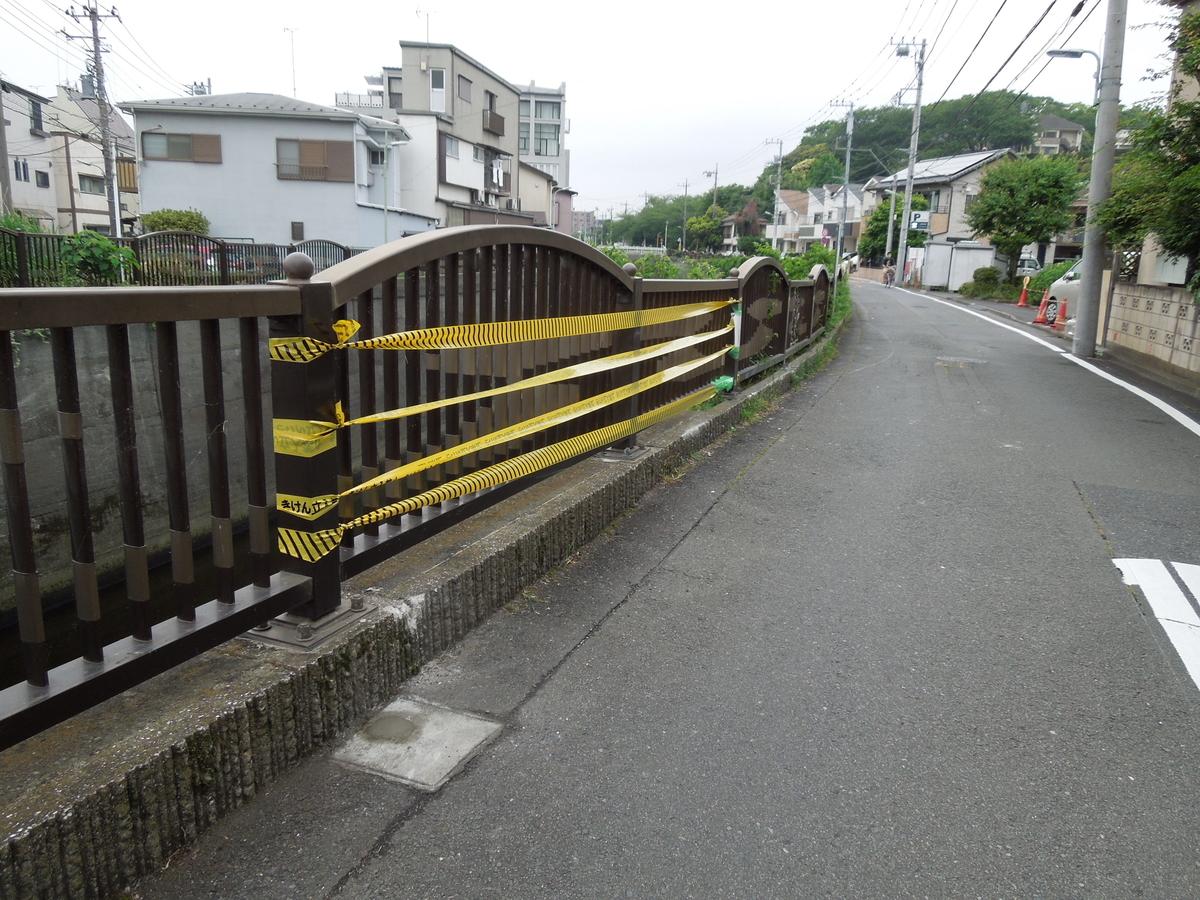 f:id:Ikegamiblog_tokyo:20200518212053j:plain