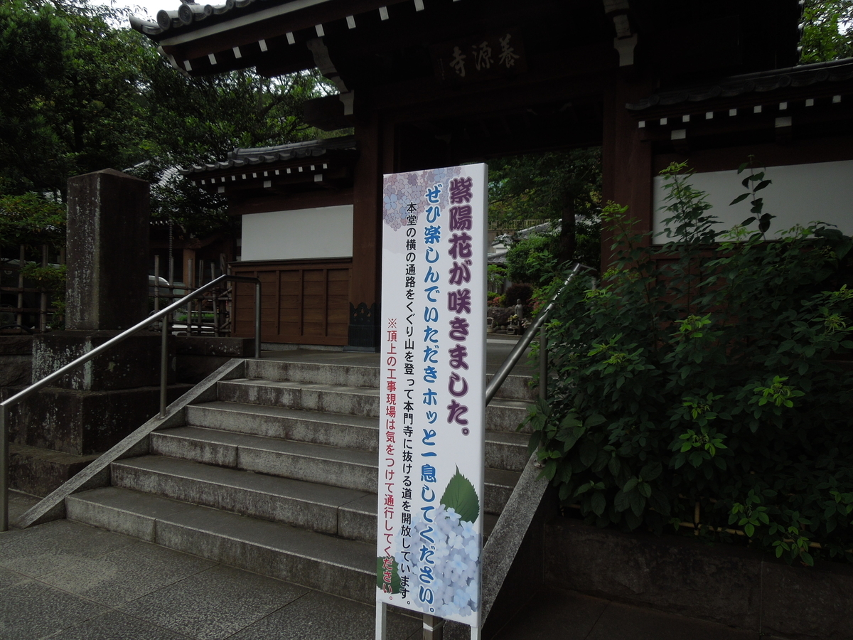 f:id:Ikegamiblog_tokyo:20200609205901j:plain