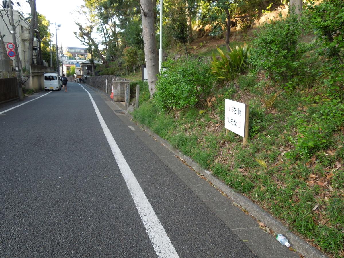 f:id:Ikegamiblog_tokyo:20200614201634j:plain