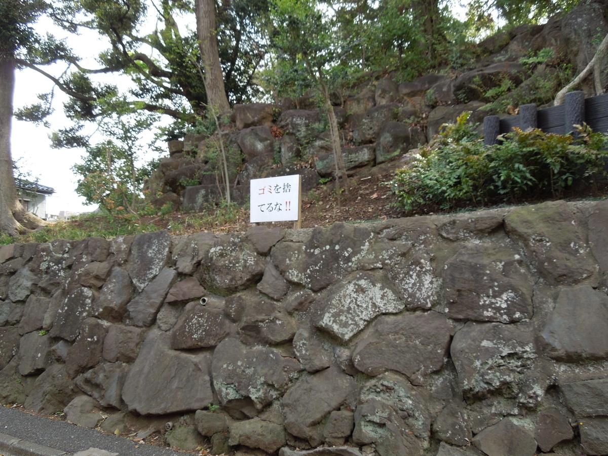 f:id:Ikegamiblog_tokyo:20200614202050j:plain