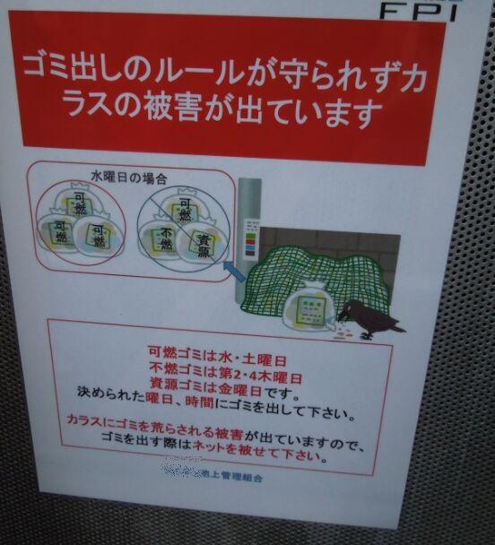 f:id:Ikegamiblog_tokyo:20200614203057j:plain