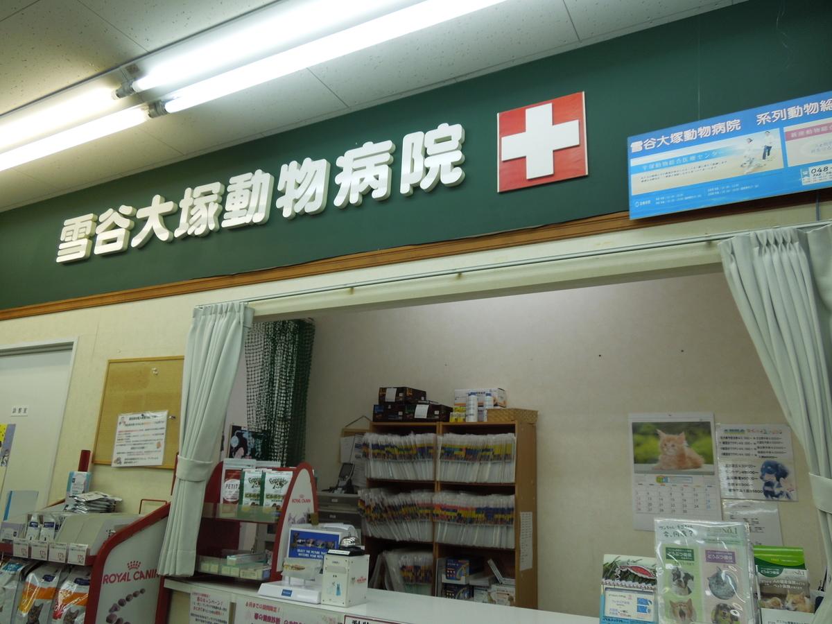 f:id:Ikegamiblog_tokyo:20200614214748j:plain