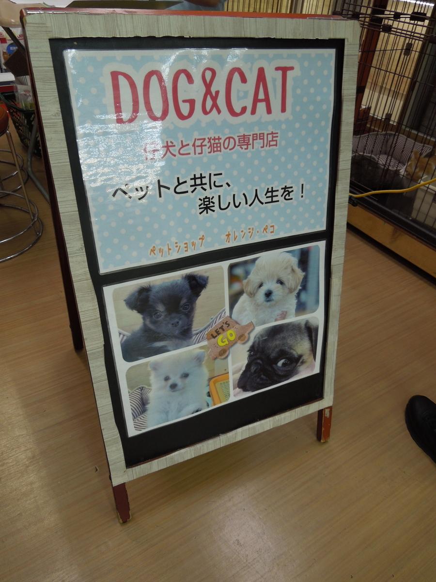 f:id:Ikegamiblog_tokyo:20200614215100j:plain