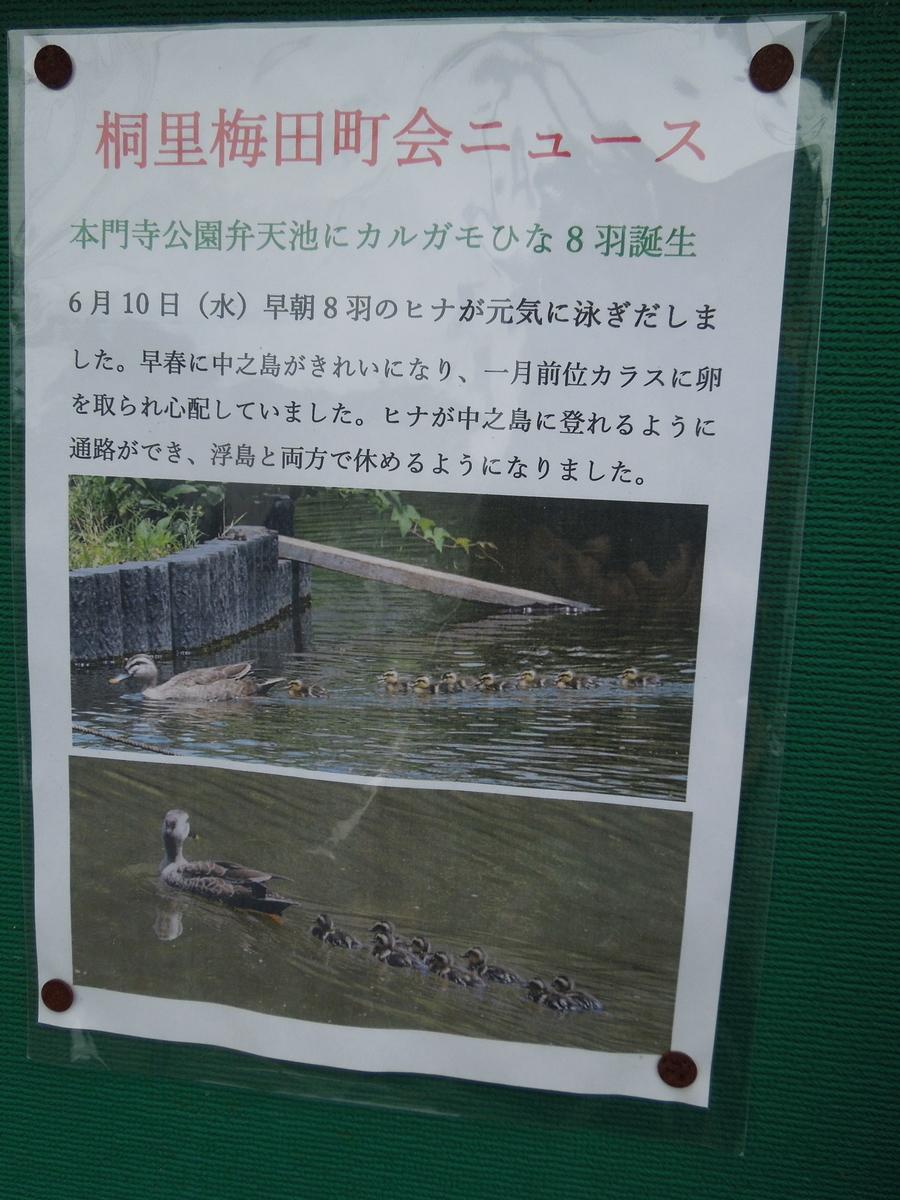 f:id:Ikegamiblog_tokyo:20200621185150j:plain